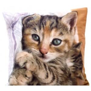Dekoračné obliečky na vankúše s mačkou