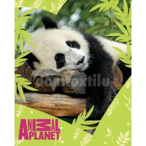 Teplá detská deka Animal Planet