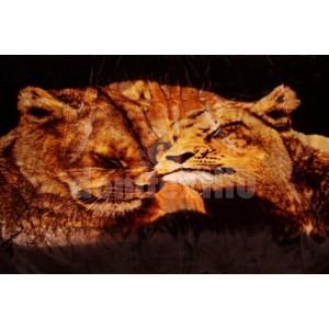 Luxusná akrylová deka s levmi