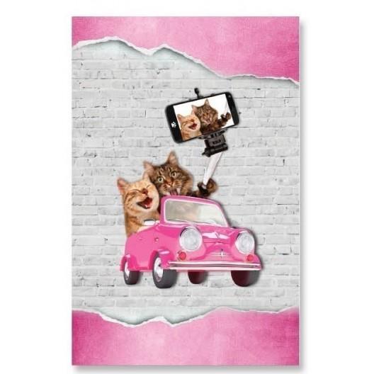 Dekoračná prikrývka ružovej farby s motívom mačiek robiacích si selfie