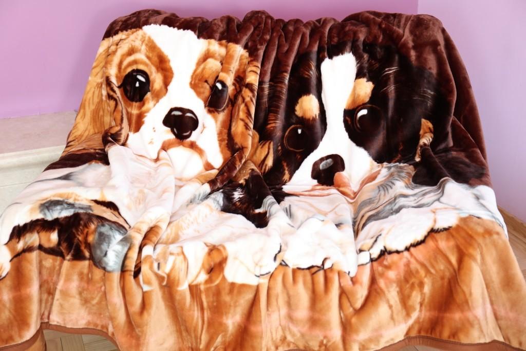DomTextilu Akrylové deky 160x210 s motívom psov 6874-18772