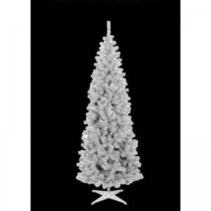 Vianočný stromček biela jedľa s krátkymi vetvičkami