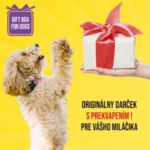 Darčekový box pre malých psov S