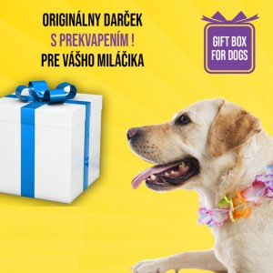 Darčeková krabička pre stredne veľké plemená psov M