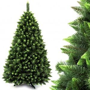Vianočný stromček so svetlo zelenými vetvičkami na koncoch