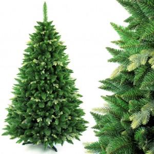 Krásna vianočná borovica s dvojakými vetvičkami