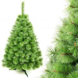 Svetlo zelený vianočný stromček borovica