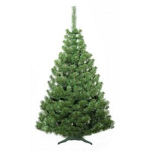 Vianočný stromček jedľa