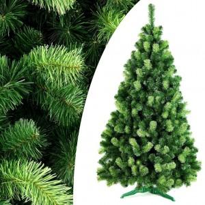 Krásny hustý vianočný stromček