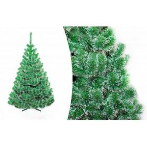 Vianočná jedľa 150 cm s bielymi koncami vetvičiek