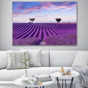 Obraz s levanduľovým poľom na stenu