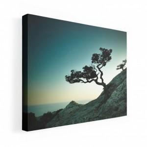 Obraz na plátne 80x60 so západajúcim slnkom