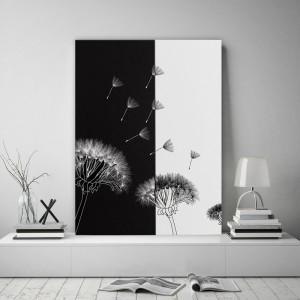 Čierno biely obraz na stenu s púpavou