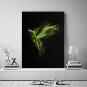 Obraz na stenu s rajským vtákom