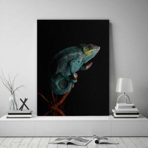 Obraz na plátne s motívom chameleóna