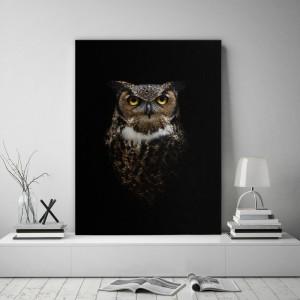 Obraz do obývačky s motívom sovy