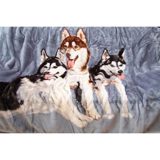Luxusná akrylová deka sivá s motívom husky