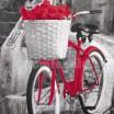 Hotový záves sivej farby s červeným bicyklom